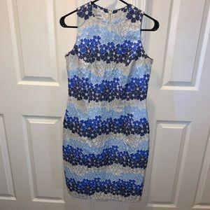 SARA CAMPBELL FLORAL DRESS (BB4)